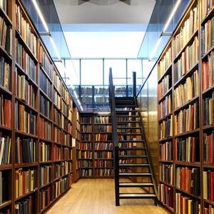 Библиотеки Каменномостского